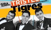 Los Tres Tristes Tigres poster