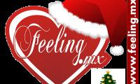 Logo Feeling Navidad